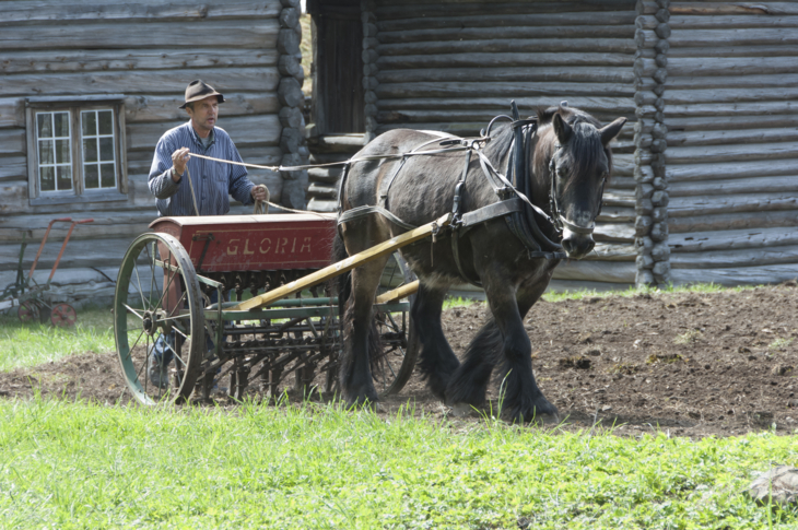 Farmer with horse and an old sowing machine at the field.
