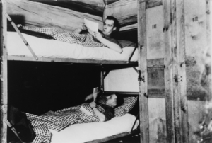 Black white historic photo of soldiers in a bunk bed reading letters.