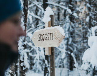 Sign in the snow with the inscription Forest trail.